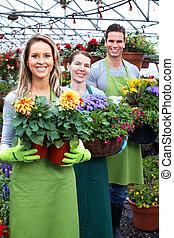 花, 賣花人, 工作, shop.