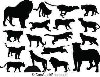 荒野, 黑色半面畫像, 貓