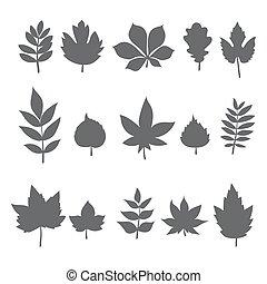 葉子, 樹, leaves., 彙整, 秋天, 黑色半面畫像