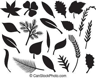 葉子, 矢量, 黑色半面畫像, 彙整