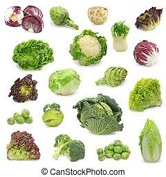 蔬菜, 收集, 卷心菜, 綠色
