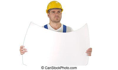 藍圖, 深思, 步行, 建造者, 看, 鋼盔, 白色, 背景。