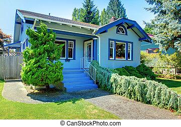 藍色, 漂亮, 風格, 老, 工匠, home.
