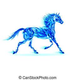 藍色, 火, horse.