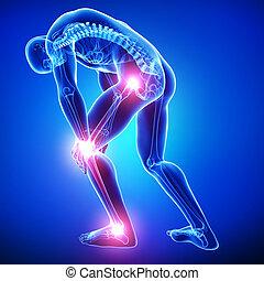 藍色, 解剖學, 男性, 痛苦, 聯接