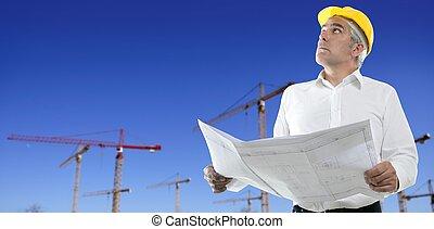 藍色, 起重機, 天空, 建設, 建筑師計划, 工程師