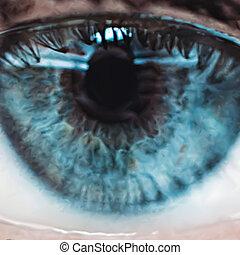 藍色, 關閉, 矢量, 向上, eye.