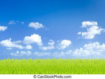 藍色, 領域, 天空, 綠色的背景, 草