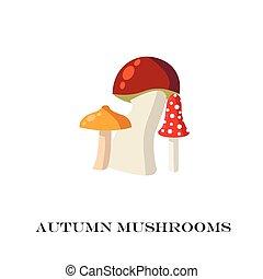 蘑菇, 背景。, 白色, 矢量, illustration.