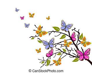 蝴蝶, 分支