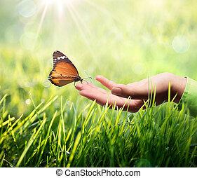 蝴蝶, 手, 草