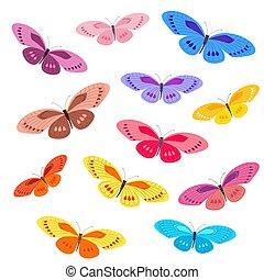 蝴蝶, 設計, 彙整, 鮮艷, 你