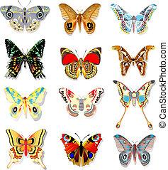 蝴蝶, 集合, 背景, 鮮艷, 白色