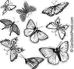 蝴蝶, 集合, 黑色, 白色