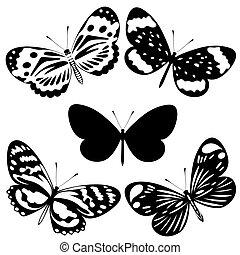 蝴蝶, 集合, 黑色, 白色, ta