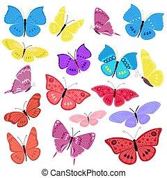 蝴蝶, 飛行, 設計, 你, 彙整