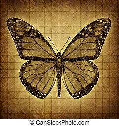 蝴蝶, grunge, 結構