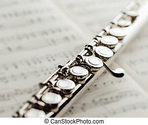 表, 長笛, 音樂, 橫向