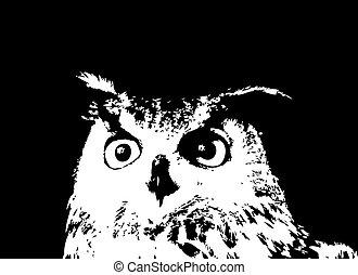 貓頭鷹, 插圖, silhouette., 矢量, 黑色, 卡通