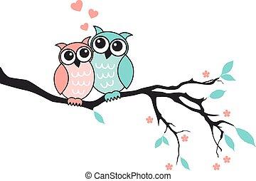 貓頭鷹, 漂亮, 矢量, 愛