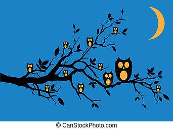 貓頭鷹, 矢量, 夜晚, 樹