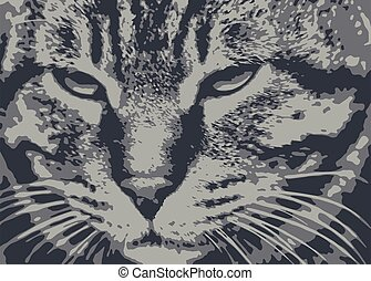 貓, 自然, 關閉, 肖像, 向上