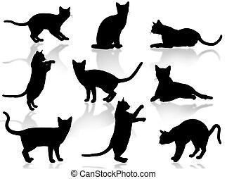 貓, 黑色半面畫像