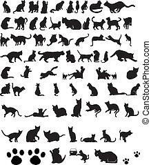 貓, 黑色半面畫像, 矢量