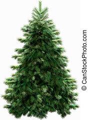 路徑, 剪, 樹, 聖誕節