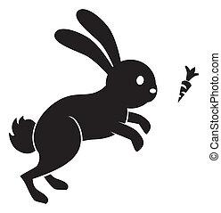 跳躍, 胡蘿卜, 兔子