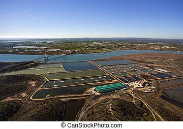 農場, fish, 空中的觀點