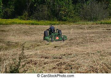 農夫, 干草, 切, 傾斜, 保釋