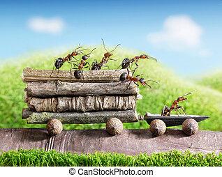 運輸, 報告, 形跡, 木制, ecofriendly, 螞蟻, 配合, 汽車, 隊, 運載
