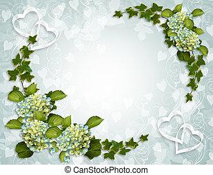 邊框, 常春藤, 植物