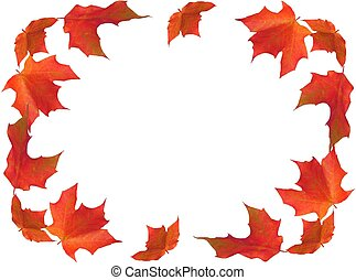 邊框, 秋天