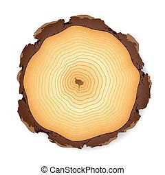 部分, 木制, 產生雜種