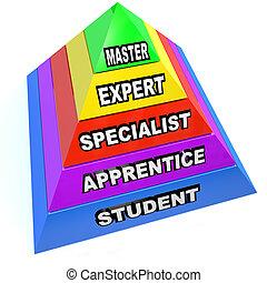 金字塔, 專家, 掌握, 上升, 技能, 掌握, 學生