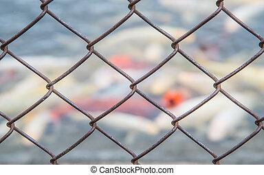 鋼, 背景。, 濾網