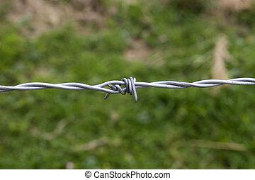 鐵絲網, 刺, 單個, 柵欄
