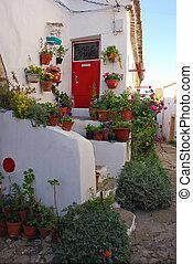 門, 房子, 老, 懷特花, 紅色