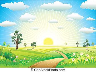 陽光普照, 草地