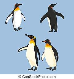 集合, 不同, 矢量, 擺在, 企鵝
