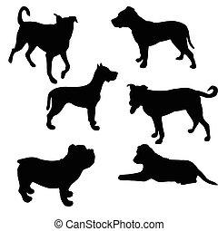 集合, 狗, vector., silhouette.