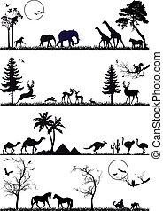 集合, 矢量, 動物, 背景