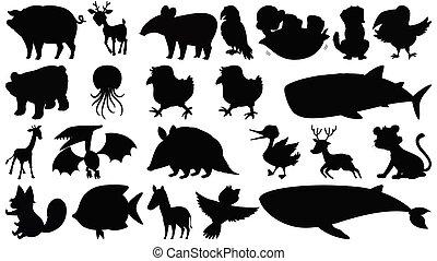 集合, 黑色半面畫像, 動物