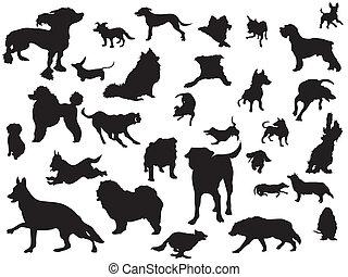 集合, 黑色半面畫像, 狗
