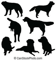 集合, 黑色半面畫像, 狗, 被隔离