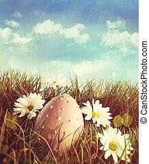 雛菊, 更東的草, 蛋, 大