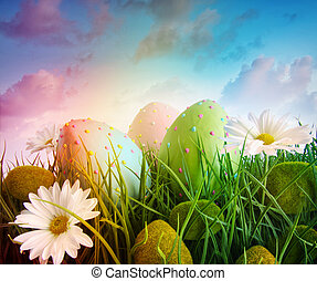 雛菊, 蛋, 彩虹, 天空, 顏色, 草, 大