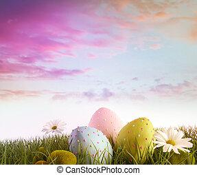 雛菊, 蛋, 彩虹, 天空, 顏色, 草